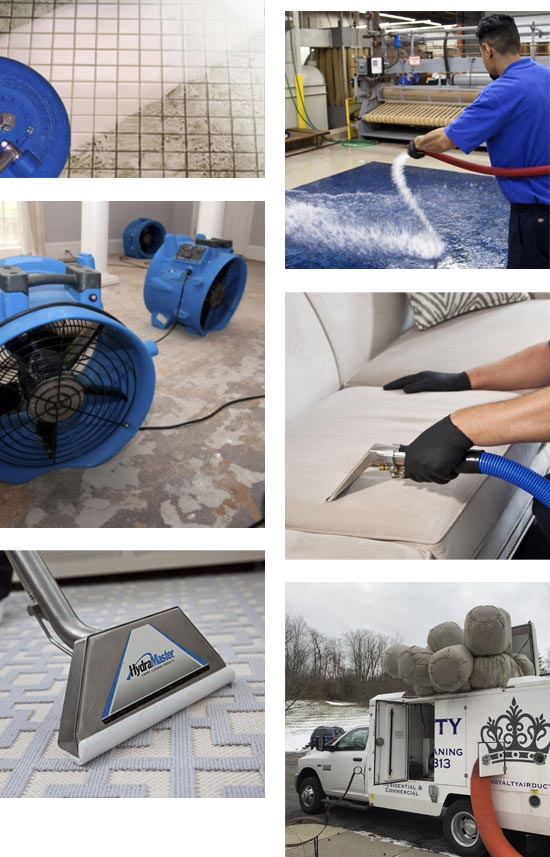 Royalty Air Duct & Carpet Cleaning - Ann Arbor, MI